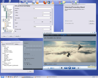 VLC - screen v 0.85